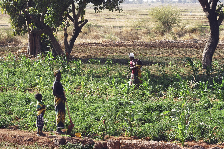 burkina faso farmers