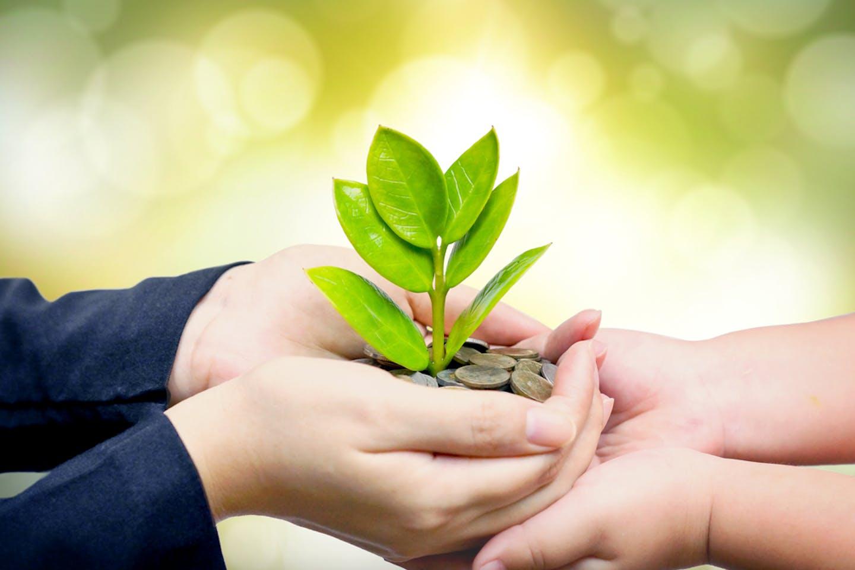 finance sustainable