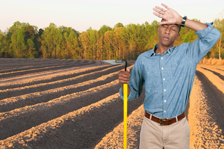 African-American farmer