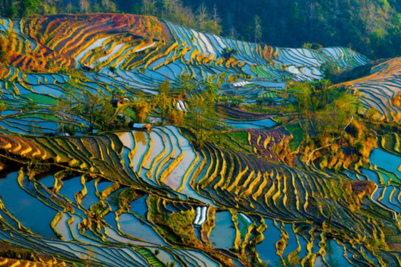 china agri climate