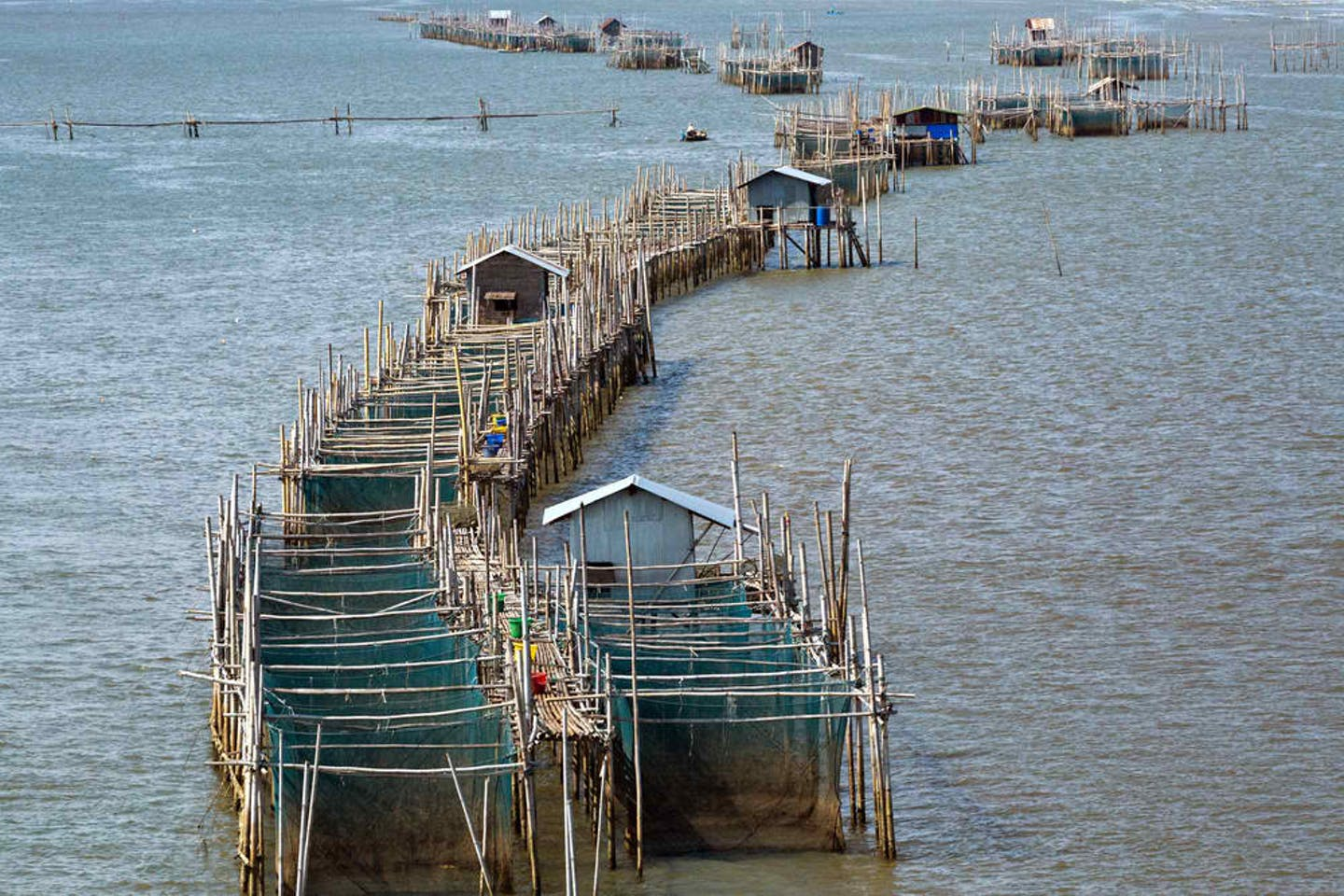 thai aquaculture