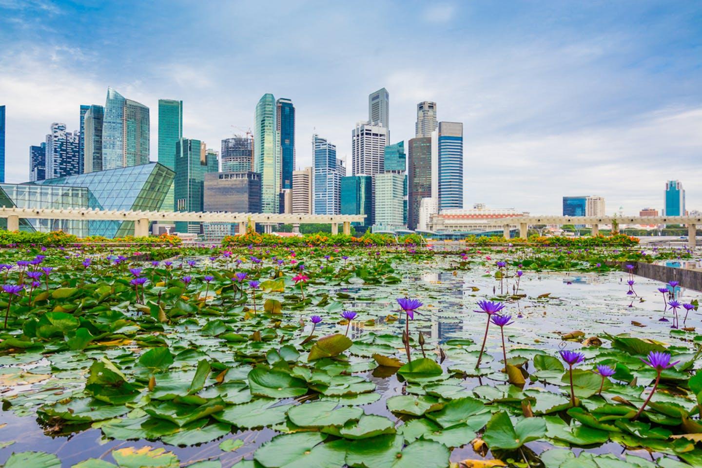 singapore green buildings skyline