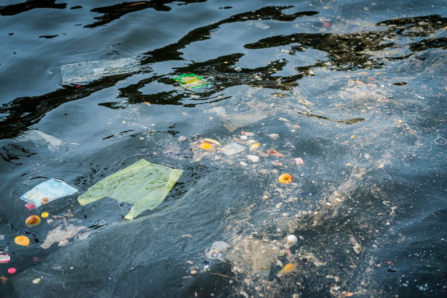plastic and oil on ocean surface