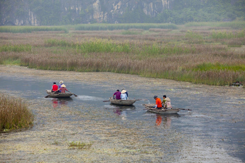 wetlands asia