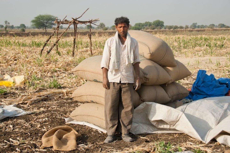farmer soya india