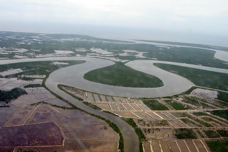 indonesia river peat