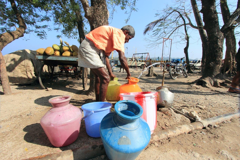 miya op-ed water