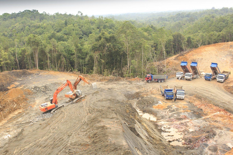 deforestation in kuching