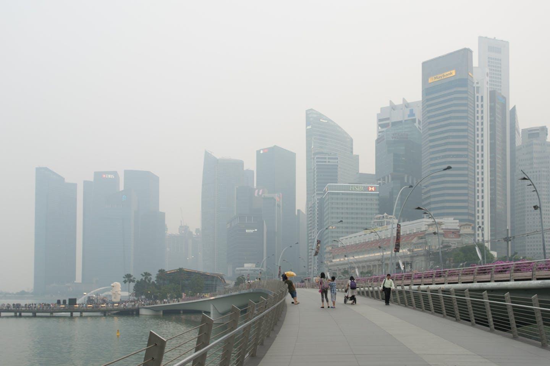 haze oped