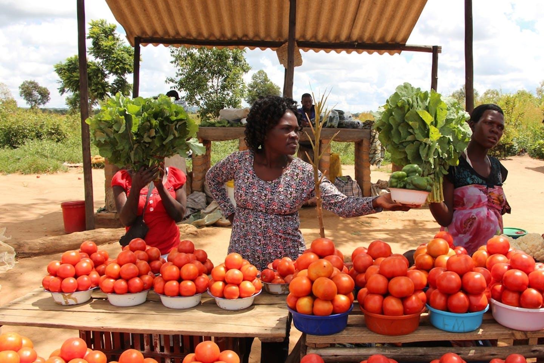 zimbabwe veg vendors