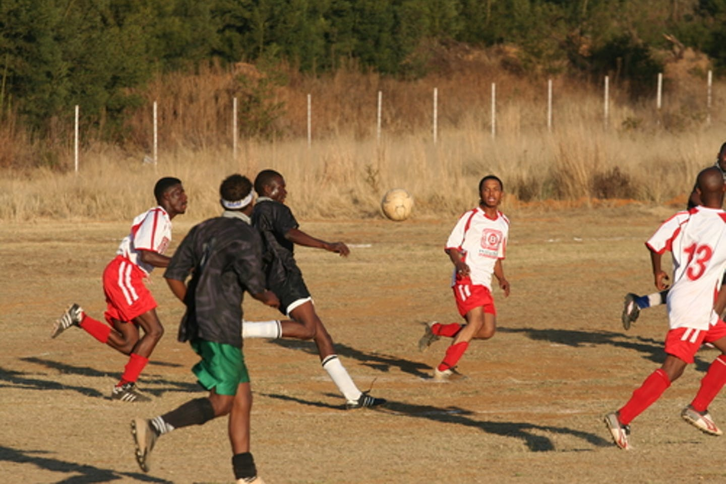 Football and forests in Africa