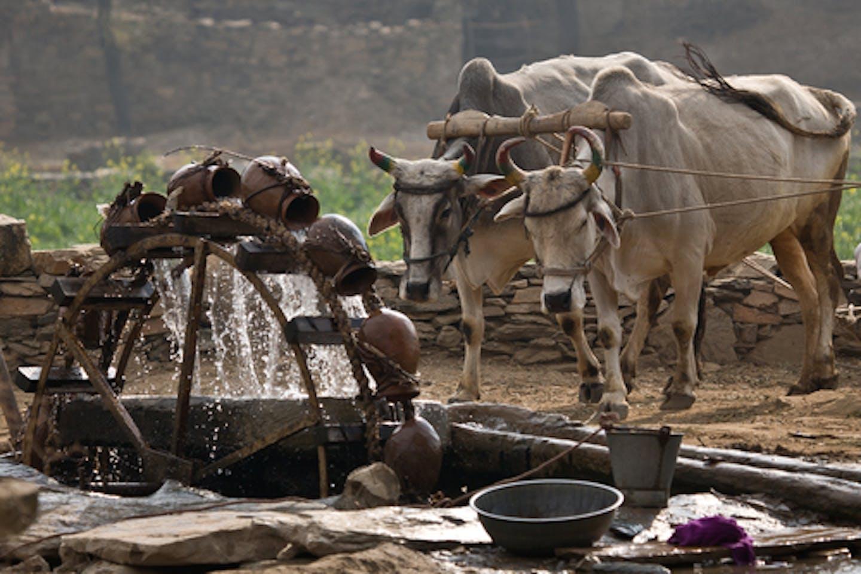 water pump india