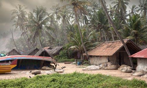 Managing the monsoon