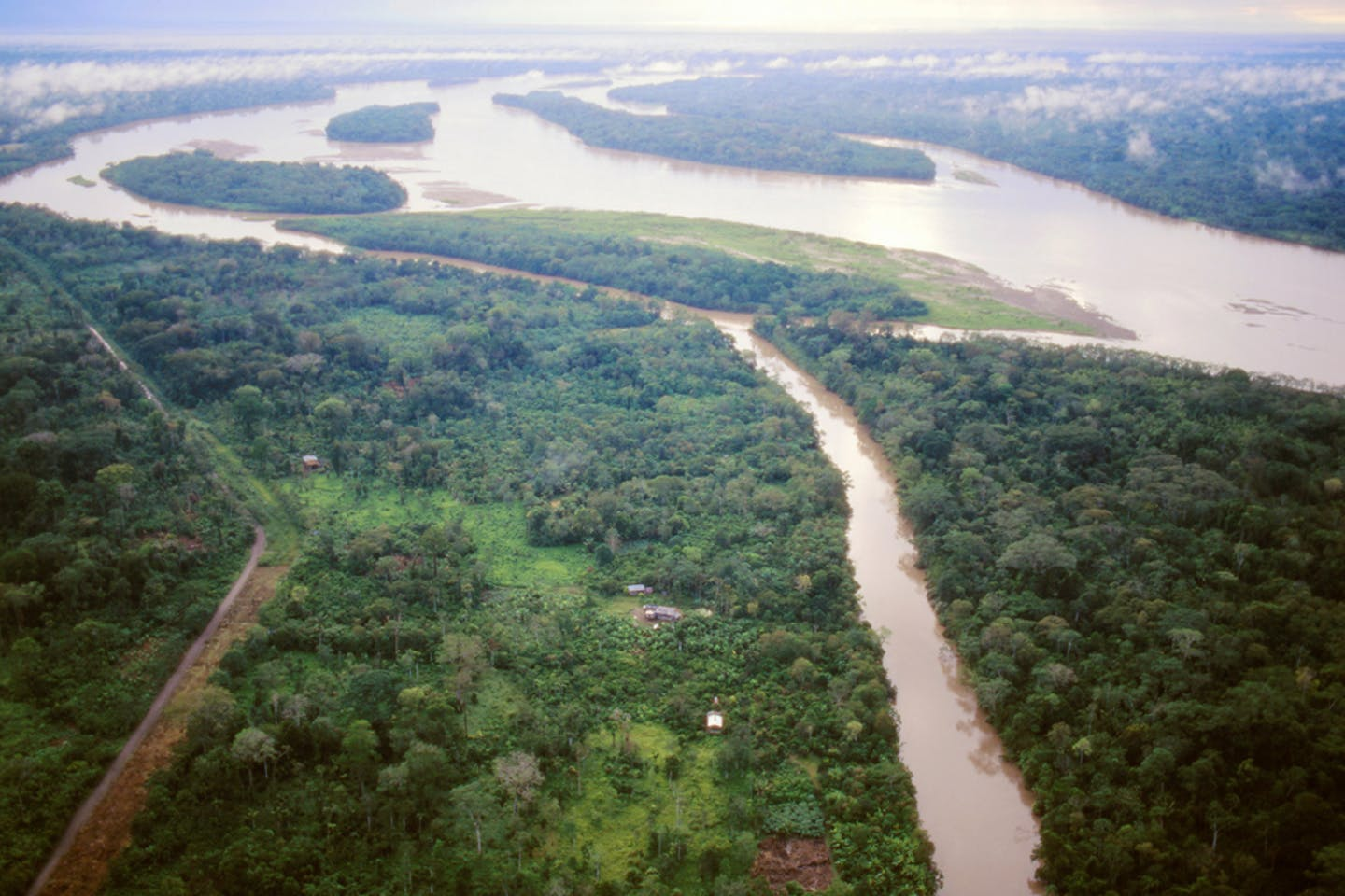 ecuadorian amazon