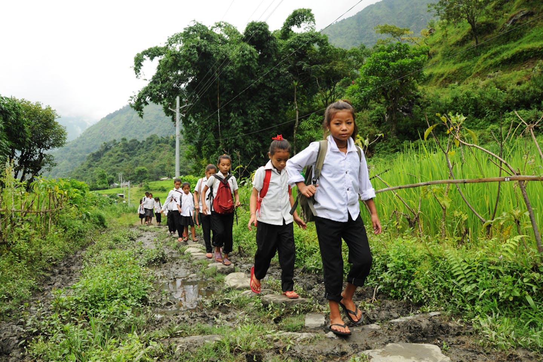 school children walk on rice paddies in India