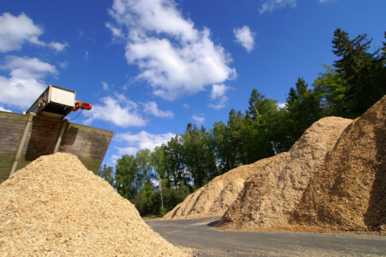 Biomass facility