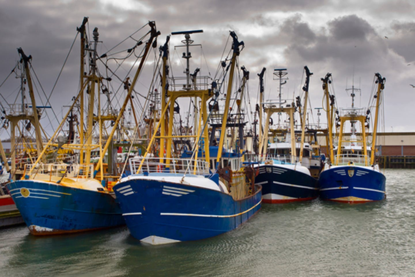 Modern fishing boats