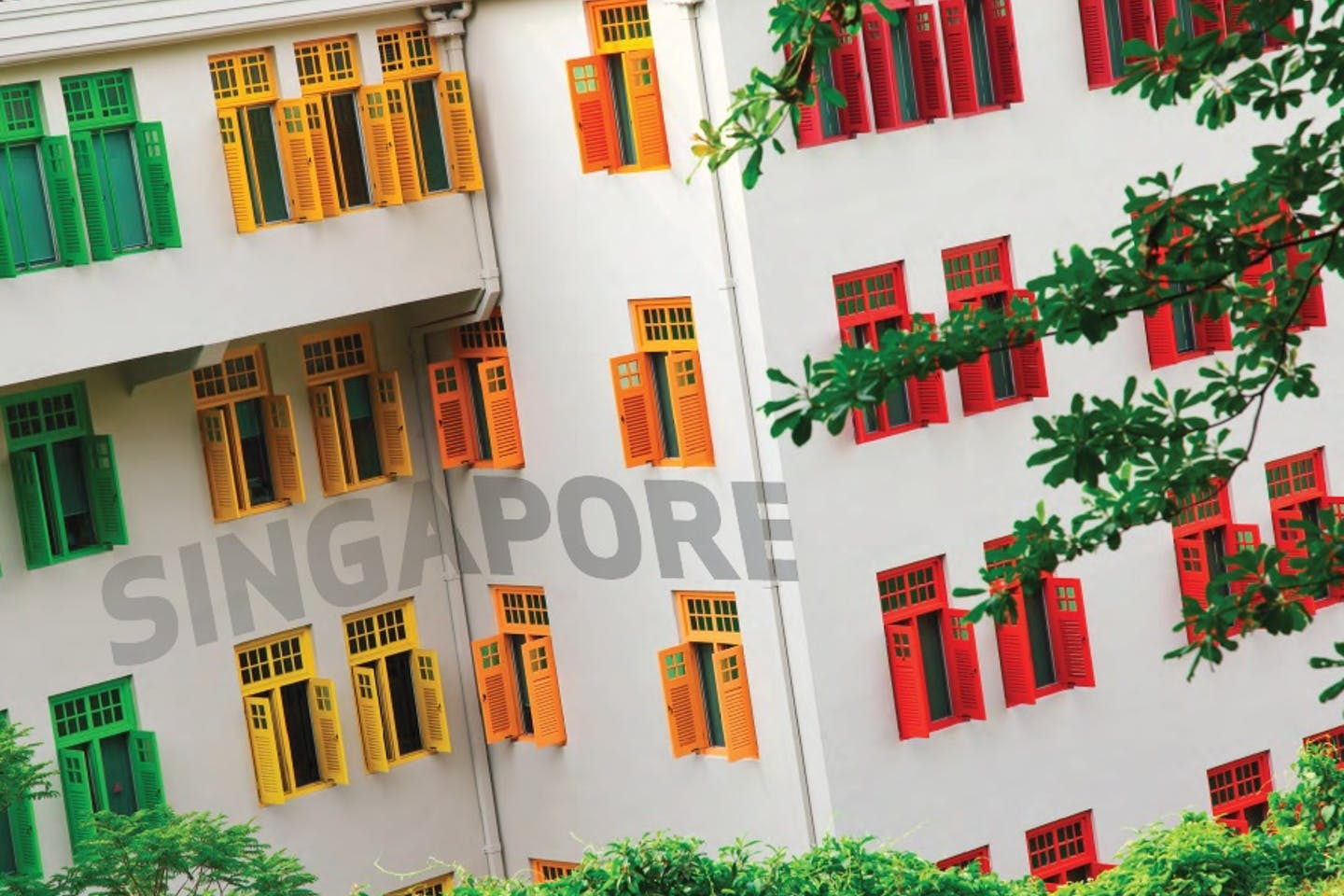 spore bldg windows