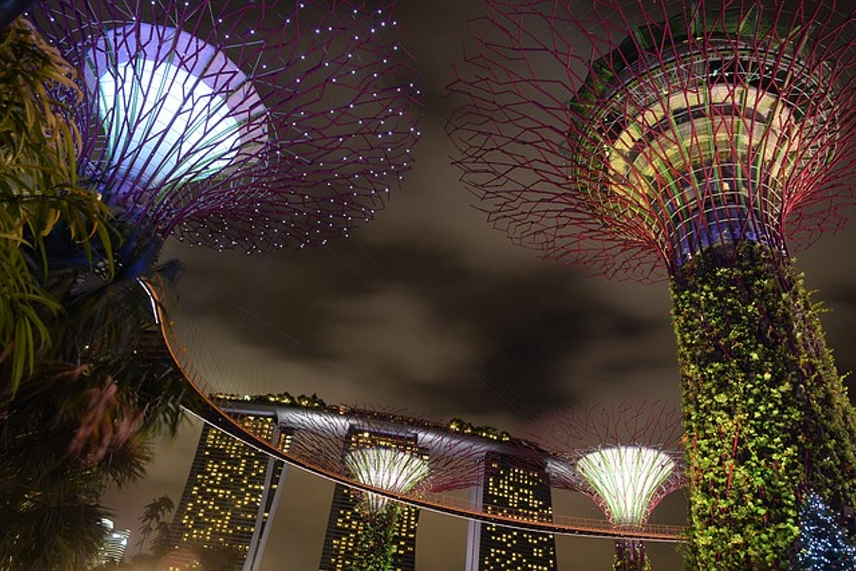 Singapore super trees