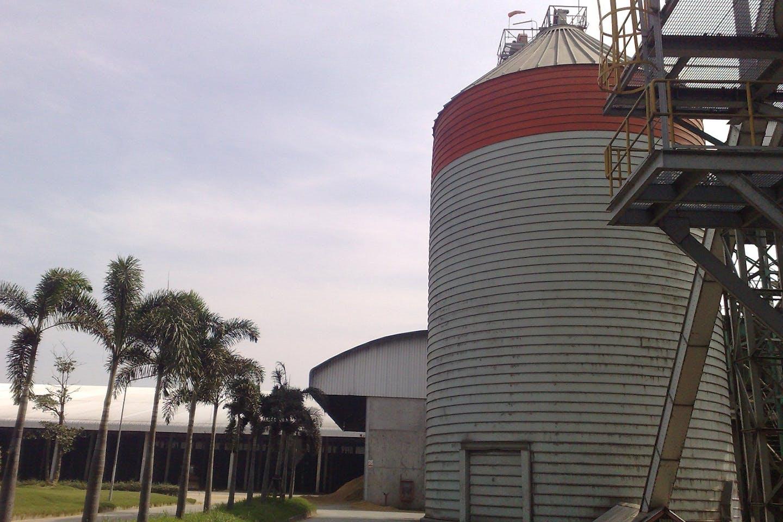 Thailand biomass