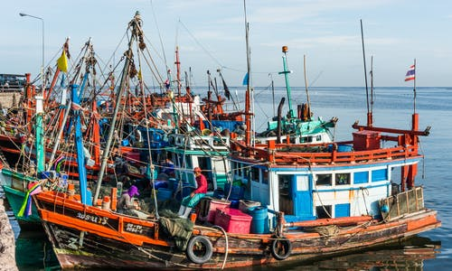 Warnings over new law to protect workers in Thai fishing industry