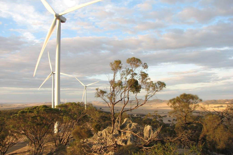 Waterloo wind farm in Australia